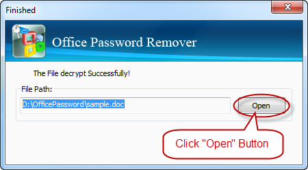 successfully remove excel password